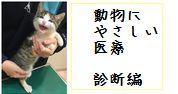 動物にやさしい医療 診断